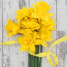 Trend Watch: Mellow Yellow set to Brighten up Weddings this Spring